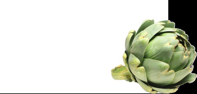 productos alcachofa slider