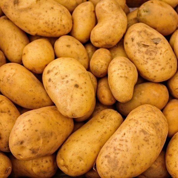 cooperativa galeria productos patatas 4