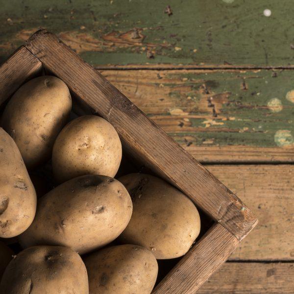 galeria productos patatas